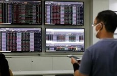 Vietnam's securities market makes great strides