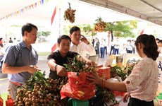 E-commerce expected to help Hung Yen longan reach out to foreign markets