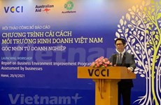 Business environment fairer for all economic sectors: VCCI Chairman