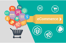 Online trade promotion – key to overcome COVID-19 crisis