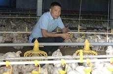 Hanoi villagers turn barren lands into profitable farms