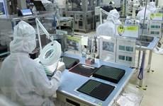Vietnam enjoys major trade surplus with UAE