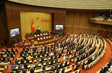14th National Assembly leaves imprints of bold reforms