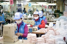 Efforts made to protect interests of Vietnamese products in EU market