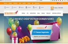 VN tops ASEAN with number of new domains
