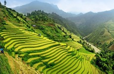 Vietnam among 20 best countries to visit