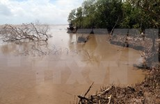 Mekong Delta localities move to address climate change