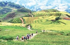 Lao Cai province braces for 'tourism year'