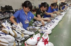 Vietnam expects 17 billion USD from leather, shoe exports