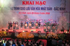 Bac Ninh: Japanese cherry blossom festival in full swing