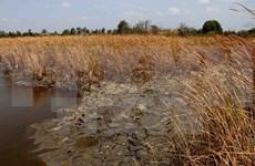Vietnam seeks Netherlands' help in preserving water in Mekong Delta