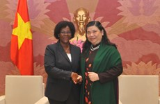 Vietnam, Mozambique forge legislative ties