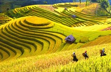 Sapa Tourism Week to host cultural events