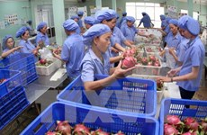 Southern localities urged to diversify trade promotion activities