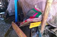 Son La: Floods kill three people