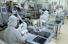 Dong Nai likely to double FDI this year