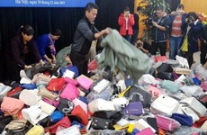 Vietnam keen to develop intellectual property