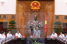 PM supports hi-tech vegetable production in Hai Duong