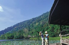 Holidaymakers suggested visiting Thailand's Thale Ban National Park