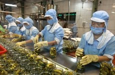 Vietnamese exporters still not take advantage of trade deals
