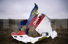 Malaysia vows to find out explanation for MH17 tragedy