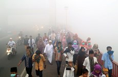 Indonesian fires pollute Malaysia's air