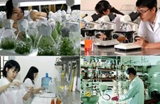 Quang Ninh prioritises science-technology development