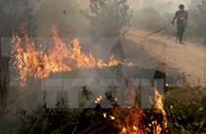 Indonesia fights forest fire