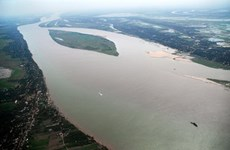 Mekong Delta islets losing farmland to serious erosion