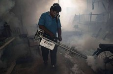 Thailand confirms two Zika-linked microcephaly cases