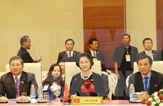 National Assembly leader attends AIPA executive committee meeting
