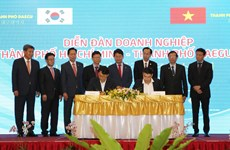 Forum connects companies of HCM, Daegu cities