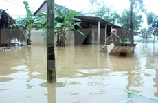 Prompt actions made to cope with floods in central region