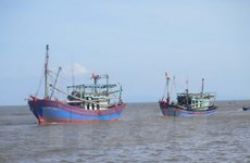 Thailand detains five Vietnamese fishing boats