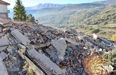 No Vietnamese affected by earthquake in Italy