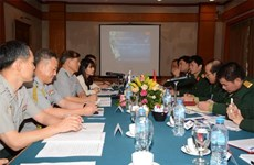 Vietnam, RoK join hands to search for soldiers' remains