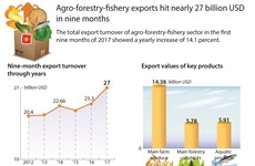 Agro-forestry-fishery exports hit nearly 72 billion USD in nine months
