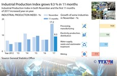 Industrial Production Index grows 9.3 percent in 11 months