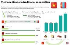Vietnam-Mongolia economic cooperation