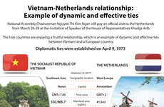 Vietnam-Netherlands relationship:Example of dynamic and effective ties
