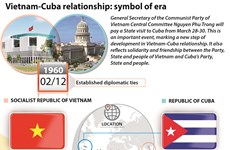 Vietnam-Cuba relationship: symbol of era