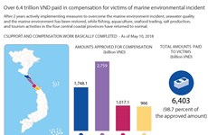 6.4 trln in compensation for victims of marine environment incident