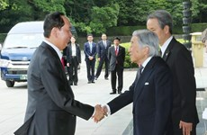Japanese Emperor hosts welcome ceremony for President Tran Dai Quang