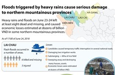 Floods cause serious damage to northern mountainous provinces