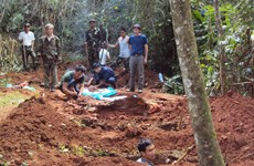 Vietnam, Laos boost repatriation of soldier remains