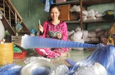 Mekong Delta net village busies in flooding season