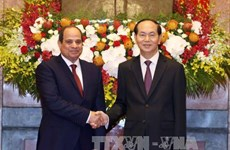 President Tran Dai Quang begins State visit to Egypt