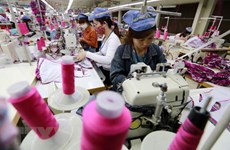 Vietnam's economy after 13 years of WTO membership