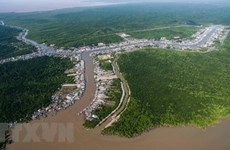 Ca Mau: People join hands in developing eco-tourism