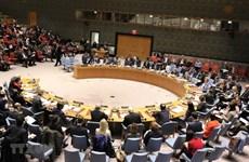 Vietnam affirms position through UNSC activities